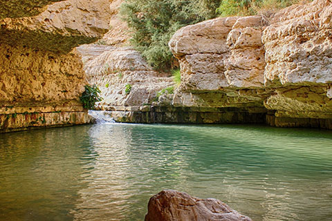 This is a stock photo. Nahal Arugot is a natural pool in the Ein Gedi Nature Reserve in Israel.